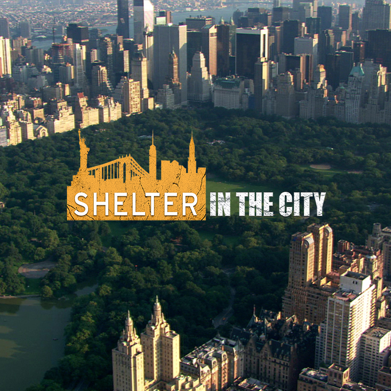 Shelter in the City screen shot